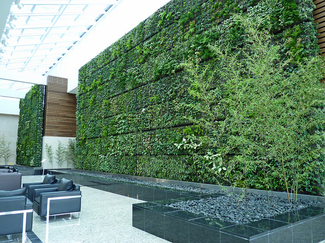 Don't suffocate people with concrete and glass – add a living wall